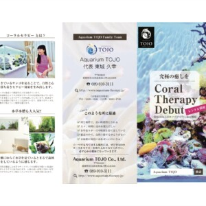 Coral Therapy Début‼︎
